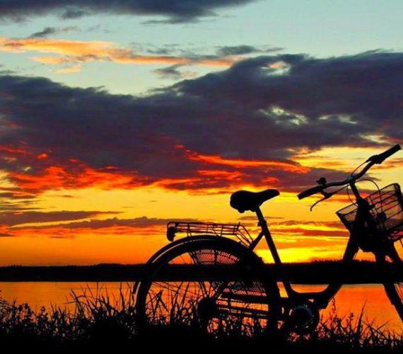 Offerta Tour in Bici (guidati e non, in e-bike e non)