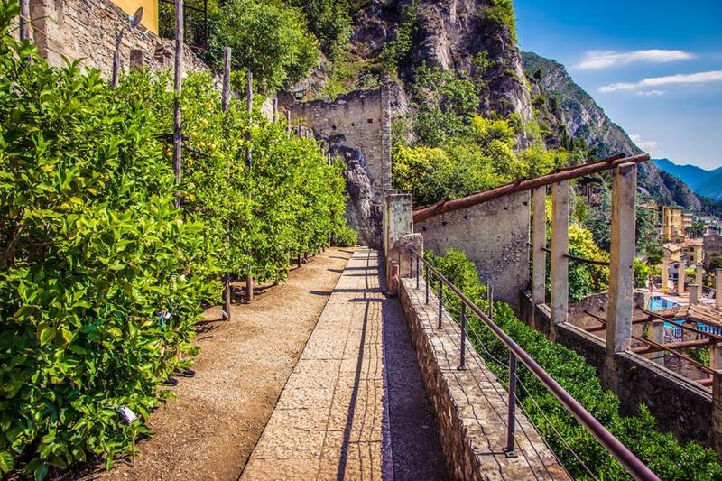 Il Lago di Garda e le sue Limonaie